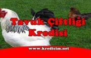 Tavuk Çiftliği Kredisi Nasıl Alınır?