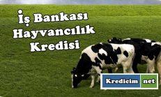 İş Bankası Hayvancılık Kredisi