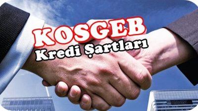 KOSGEB Kredi Şartları 2018