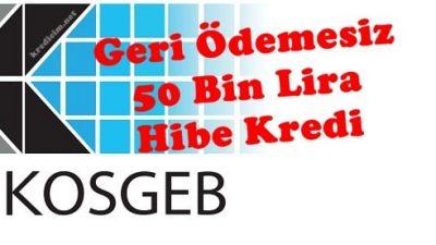 50 Bin Lira Geri Ödemesiz, Hibe Kredisi Almanın Püf Noktaları